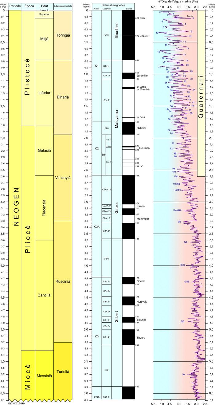 Detall dels darrers 6 milions d'anys