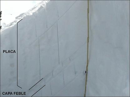 Figura 4: Perfil estratigràfic on s'indiquen les diferents capes del mantell nival (Foto: Ivan Moner).