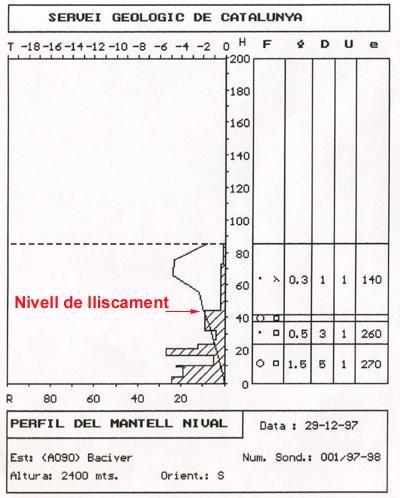 Sondeig i perfil estratigràfic realitzats el mateix dia de l'allau, al lloc de l'accident