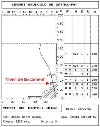 El perfil va ser realitzat a la cota 2200 m i la zona de sortida de l'allau es trobava 250 m de desnivell més amunt, el qual fa pensar que la crosteta que hi ha entre els 50 i els 60 cm no devia existir.