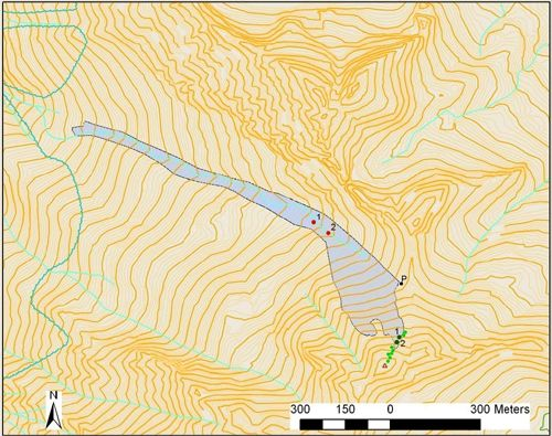 Cartografia de l'allau. Es representa la posició de les víctimes en el moment de desencadenar-se l'allau (verd fosc) i en aturar-se l'allau (vermell). En verd clar, posició aproximada de la resta de components del grup. (A partir de les observacions directes i les dades facilitades pels afectats). Punt de realització del perfil (P).