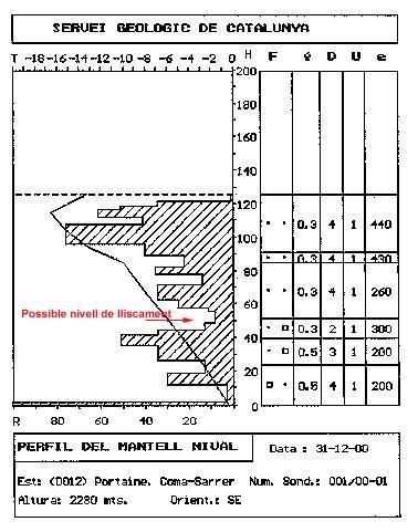 Sondeig i perfil estratigràfic realitzats el dia posterior al desencadenament de l'allau, al lloc de l'accident.