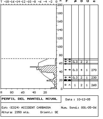 Sondeig i perfil estratigràfic realitzat el dia 10 de desembre en la zona de sortida de l'allau.