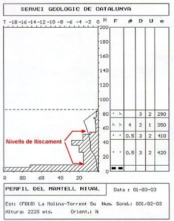 Perfil estràtigràfic realitzat a la zona de sortida de l'allau, on s'observen les dues plaques que es van desencadenar.