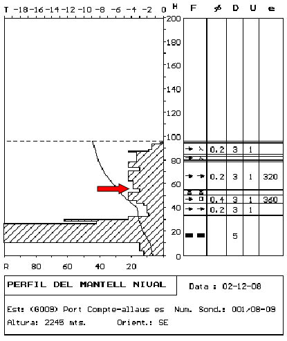 Figura 1. Perfil estratigràfic realitzat el dia següent a l'accident. La fletxa indica la posició del nivell de lliscament a la zona de sortida de l'allau.