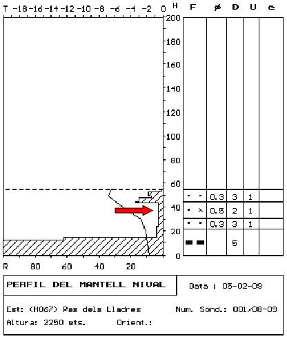 Figura 1. Perfil estratigràfic realitzat el mateix dia de l'accident. La fletxa indica la posició del nivell de lliscament a la zona de sortida de l'allau.