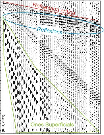 Exemple del registre d'ones sísmiques produïdes per una font sísmica i detectades per un grup de 48 sensors. Es marquen tres sectors amb les arribades dels tres tipus d'ones (refractades, reflectides i superficials)diferenciades pel seu patró d'arribada. Cadascun d'aquest tipus és la base d'una de les tècniques sísmiques aplicades a l'IGC.