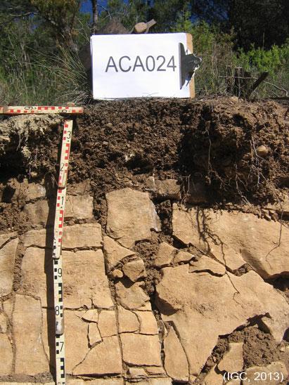Fotografia d'un sòl.