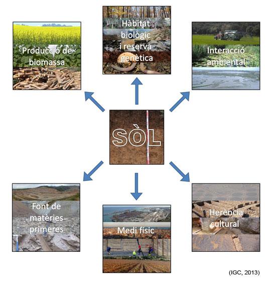 Esquema de les funcions del sòl.