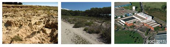 Algunes amenaces a què està exposat el sòl: erosió, salinització i segellat. Fotografies.