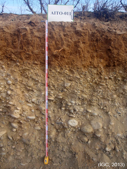 Fotografia del perfil d'un sòl.