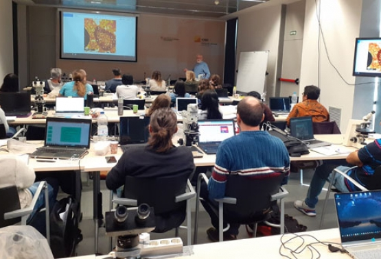 Notícia 363 - 3rd Intensive Training Course on Soil Micromorphology