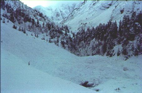Dipòsit d'una allau de neu recent humida a la vall de Gaube (Pirineu central francès). (Foto: Carles García)