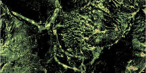 Imatge aèria, a partir de dades LiDAR, d'una zona innivada.