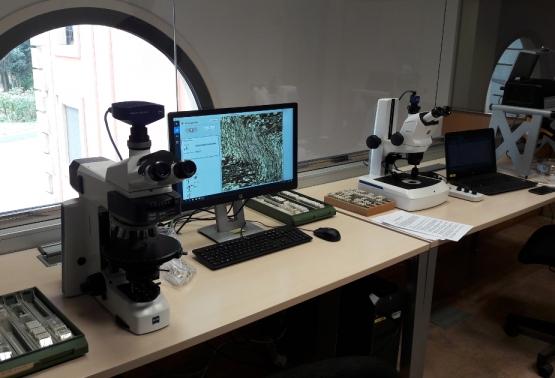 Notícia 323 - Laboratori de geologia (petrografia i geoquímica)